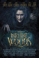 Into The Woods - The Cast